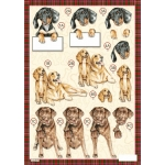3D Decoupage Sheet. DieCut. DOGS.  Daschund, Chocolate Labradors & Golden Retrievers
