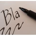Calligraphy PITT Artist Pen 2.5 (Marker) BLACK
