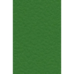 5 Sheets GREEN A4 HAMMER Finish Cardstock. 350mic/250gsm