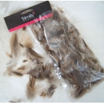 Duck Feathers 5g NATURAL