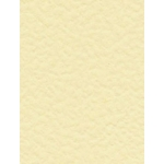 10 Sheets A4 HAMMER Finish Cardstock. 350mic/250gsm - CREAM