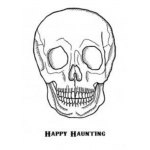 HAPPY HAUNTING Set of 2 mounted cling stamps Creative Expressions skull